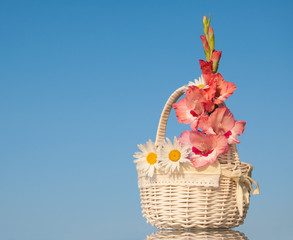 White wicker basket with pink and white flowers against clear blue sky