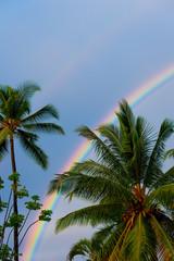 Double rainbow at sunrise on the Big Island of Hawaii