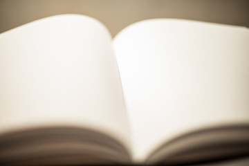 Open pages of a blank book