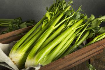 Raw Organic Green Celery Stalks