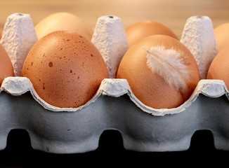 Close-Up Of Eggs In Carton