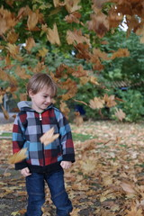 Autumn Leaves Falling On Boy In Park
