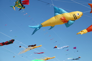 Assortment Of Colorful Kites Flying In Clear Blue Sky