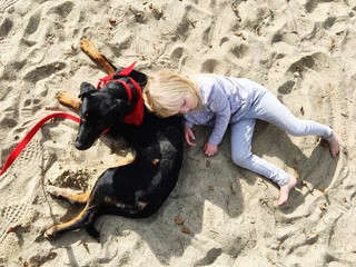 High Angle View Of Playful Girl With Dog At Beach