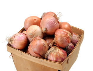 onion roots