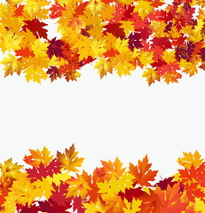 Autumn background with maple leaves against white background. Vector Illustration