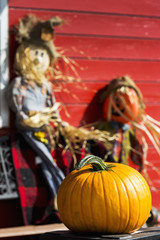Orange pumpkin with decorative scarecrows in the background on a red wooden barn, Innisfail, Alberta, Canada