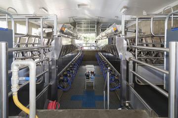 Milking parlor interior