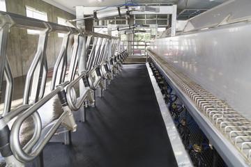 Parallel 16 milking parlour, Dewdney, British Columbia, Canada