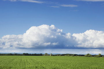 Billows of clouds with blue sky over a field,Thunder bay ontario canada