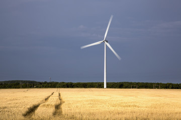 A single wind turbine in a field with tire tracks running through it,Northumberland england