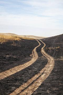 Tire tracks in a field,Canada