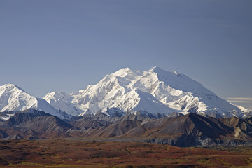 View Of Mt.Mckinley On A Clear Day From Eielson Visitor Center With Fall Colors Surrounding The Snow Covered Mountains, Denali National Park, Interior Alaska, Autumn/N