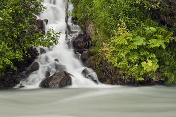 A Cascading Waterfall Flows Into Granite Creek, Turnagain Pass, Chugach National Forest, Summer
