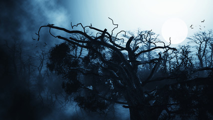night forest halloween background