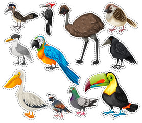 Sticker set with many birds