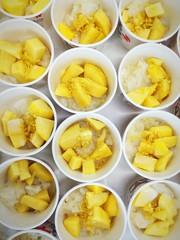 Mango with sticky rice (Thai dessert)