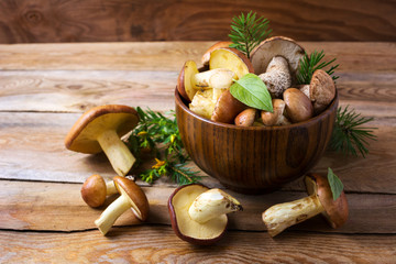 Forest picking mushrooms in wooden bowl