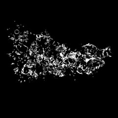 splash of ink isolated on black background. beautiful splash of wine close-up.   water splash. oil splash. water spray with drops isolated.