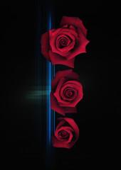 走査線上の赤い薔薇