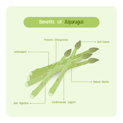 Infographic for garden asparagus benefits with handwriting font style