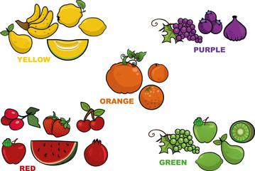 Five different colors vector fruit illustrations.