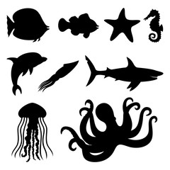 Fish, starfish, seahorse, squid, dolphin, shark, jellyfish, and octopus.