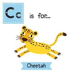 C letter tracing. Jumping Cheetah. Cute children zoo alphabet flash card. Funny cartoon animal. Kids abc education. Learning English vocabulary. Vector illustration.