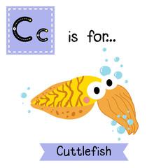 C letter tracing.Yellow Cuttlefish. Cute children zoo alphabet flash card. Funny cartoon animal. Kids abc education. Learning English vocabulary. Vector illustration.