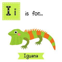 I letter tracing. Iguana lizard reptile. Cute children zoo alphabet flash card. Funny cartoon animal. Kids abc education. Learning English vocabulary. Vector illustration.