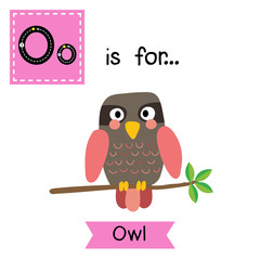 O letter tracing. Pink Owl bird perched on the branch with leaves. Cute children zoo alphabet flash card. Funny cartoon animal. Kids abc education. Learning English vocabulary. Vector illustration.