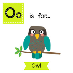 O letter tracing. Turquoise Owl bird perched on the branch. Cute children zoo alphabet flash card. Funny cartoon animal. Kids abc education. Learning English vocabulary. Vector illustration.