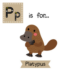P letter tracing. Standing Platypus. Cute children zoo alphabet flash card. Funny cartoon animal. Kids abc education. Learning English vocabulary. Vector illustration.