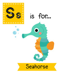 S letter tracing. Cute Seahorse. Cute children zoo alphabet flash card. Funny cartoon animal. Kids abc education. Learning English vocabulary. Vector illustration.