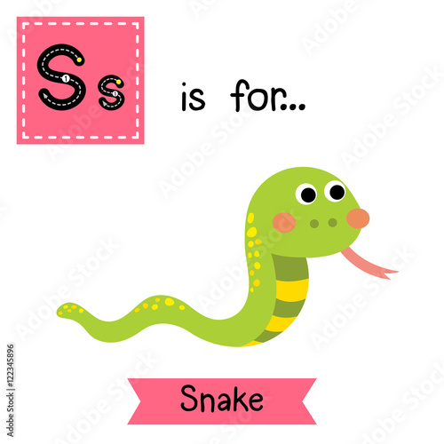 S letter tracing  Green Snake  Cute children zoo alphabet flash card