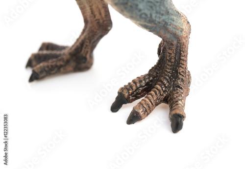 feet of spinosaurus toy on white background
