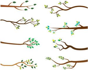 Vector Set of Tree Branches with Green Leaves