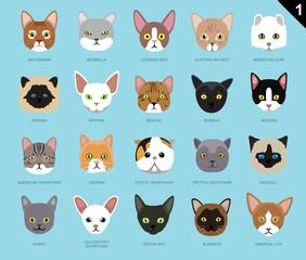 Cat Faces Icon Cartoon 1