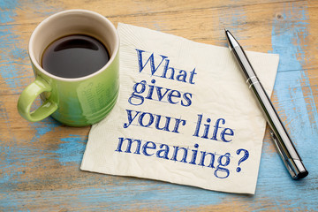 What gives your life meaning question