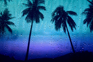 Rain drop on glass window with silhouette Palm or Coconut Tree Outside at the island