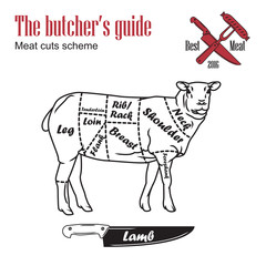 Butcher guide vector illustration. Cut scheme lamb meat. Vintage