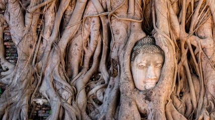 Ayutthaya Historical Park, Phra Nakhon Si Ayutthaya, Ayutthaya , Thailand.Image is soft focus.