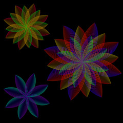 Set of colors. Flowers with overlapping petals striped.