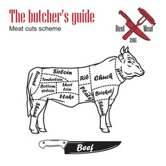 Butcher guide vector illustration. Cut scheme beef. Cow meat vintage