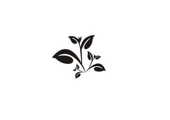 leaf vector icon logo