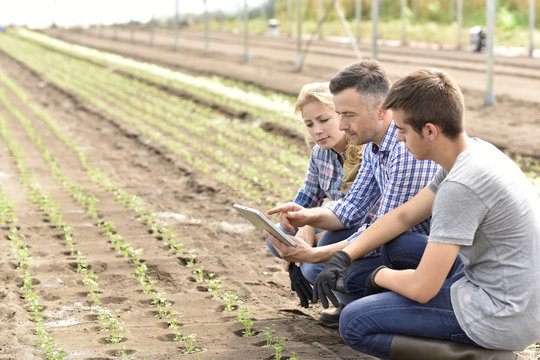 Students in agriculture learning about organic greenhouse