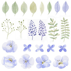 Watercolor set of flowers, leaves and plants