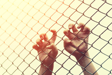 Hand with metal fence, feeling no freedom