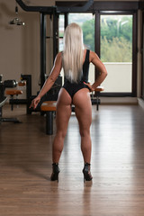 Gorgeous Caucasian Woman Posing In The Gym
