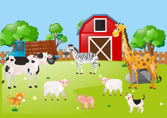 Many animals in the farmyard